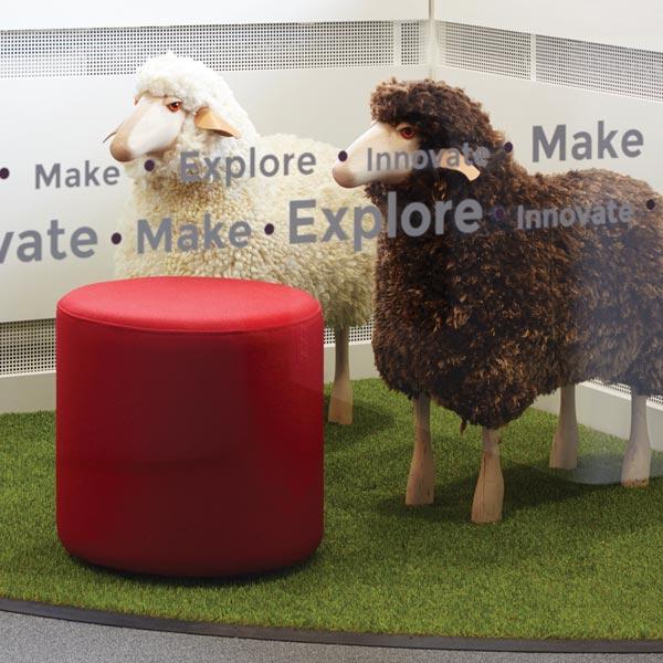 ewe-range